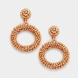 Jewelry - Seed Bead Earring